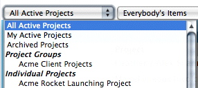 Using Project Groups